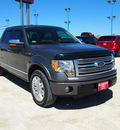 ford f 150 2010 dk  gray platinum flex fuel 8 cylinders 2 wheel drive automatic 76234