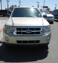 ford escape 2010 gold suv xlt gasoline 4 cylinders front wheel drive automatic 79925