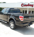 ford f 150 2009 black fx4 flex fuel 8 cylinders 4 wheel drive automatic with overdrive 77662